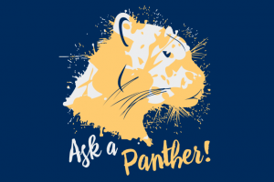 Ask a Panther FYM 640x427