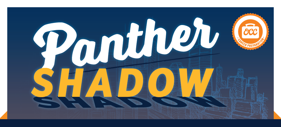 Panther Shadow Header